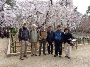 編集 2019.3.30(弘法寺しだれ桜)